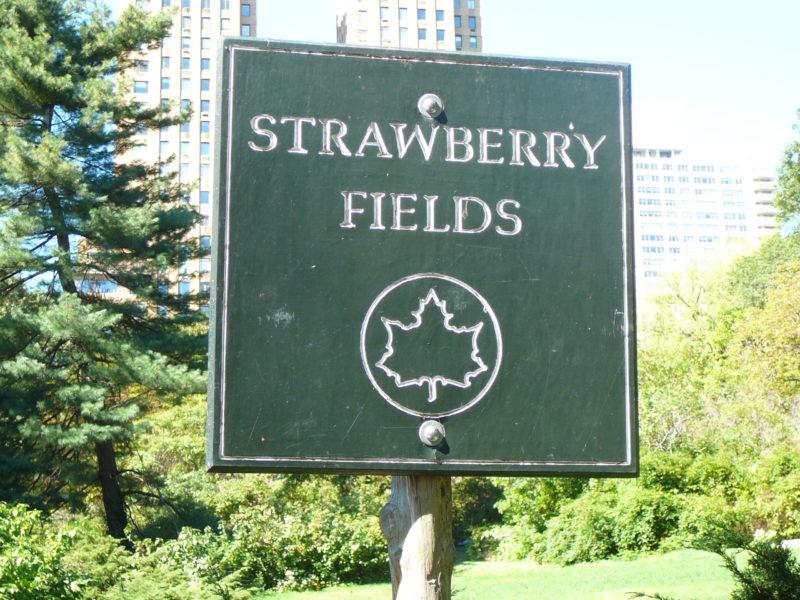 New York minimoon Strawberry Fields