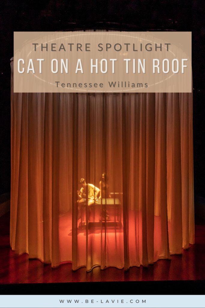 Cat on a Hot Tin Roof Pinterest Pin