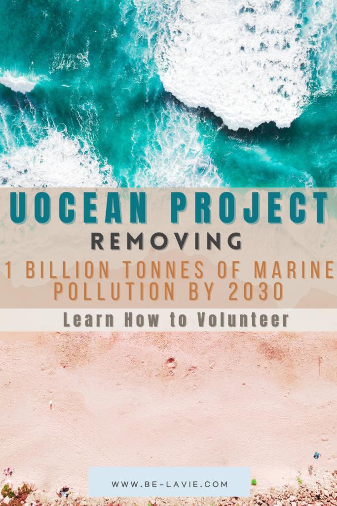 U Ocean Clean-Up