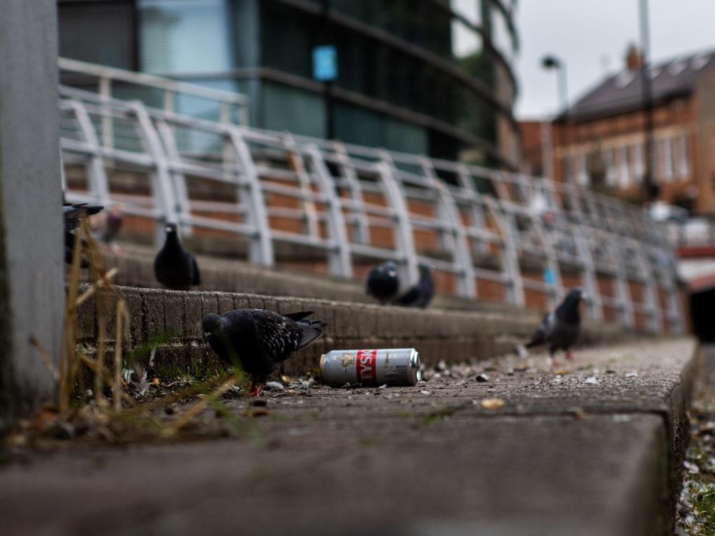 Tow path rubbish