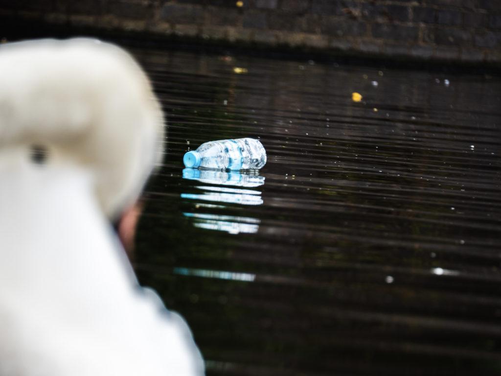 Plastic bottle in canal